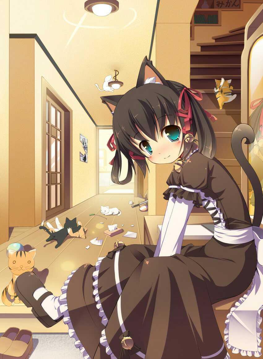 【图片】谁家的猫娘请领回家