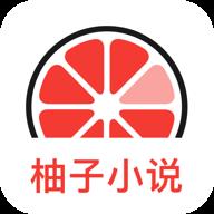 【资源分享】柚子小说,全网免费阅读,没有广告!!