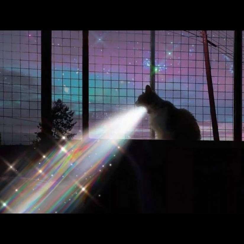 【分享】个性背景--QQ微信彗星背景