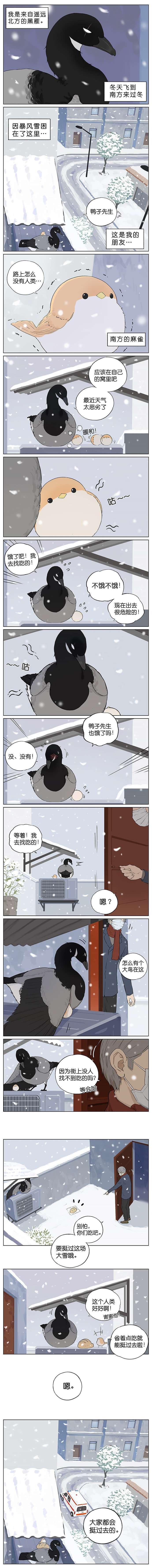 【漫画更新】萌,南方的鸟和北方的鸟~