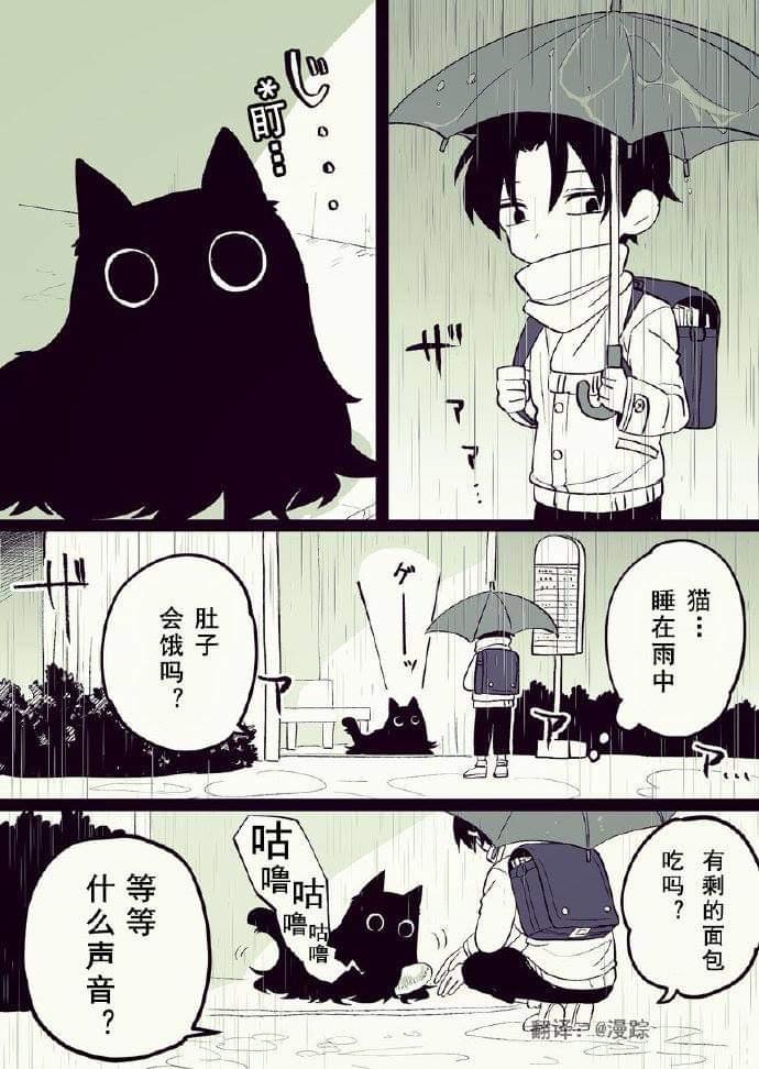 【漫画】似猫非猫(不更)-小柚妹站