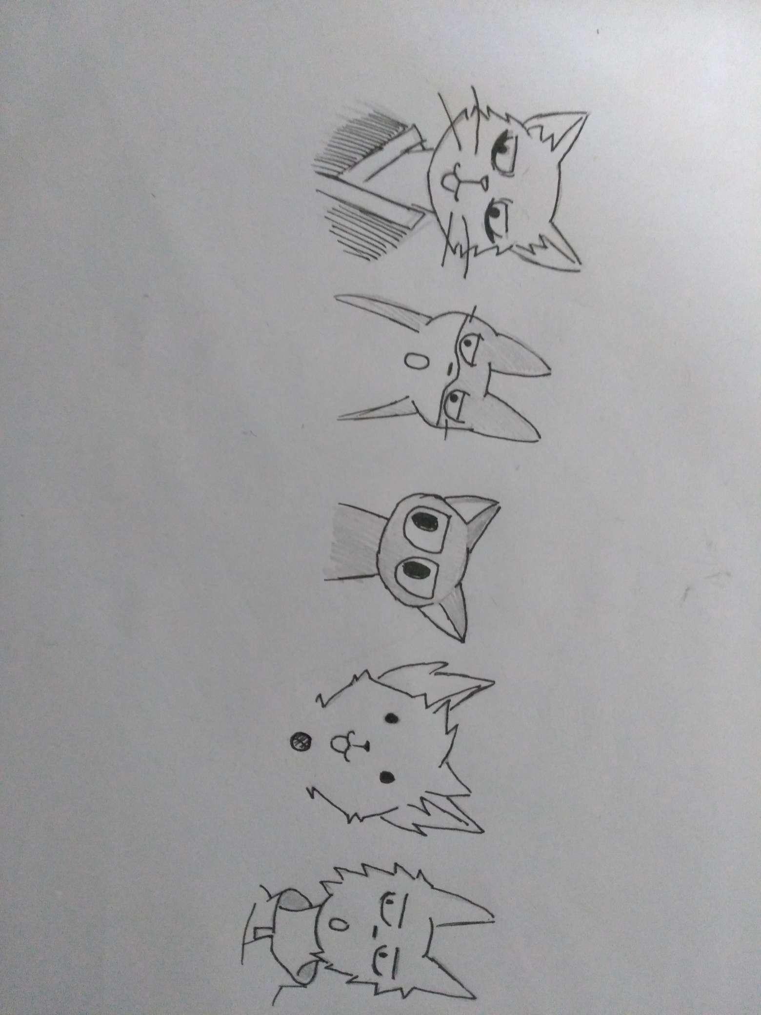 【手绘】国猫,二次元绅士抱枕图片