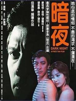 台湾的美女:暗夜