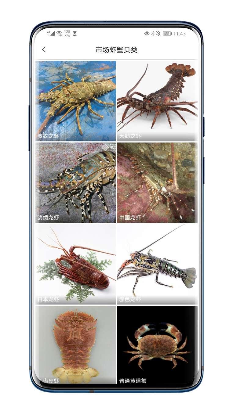 **分享**问鱼V1.1.7★识别各种海洋生物