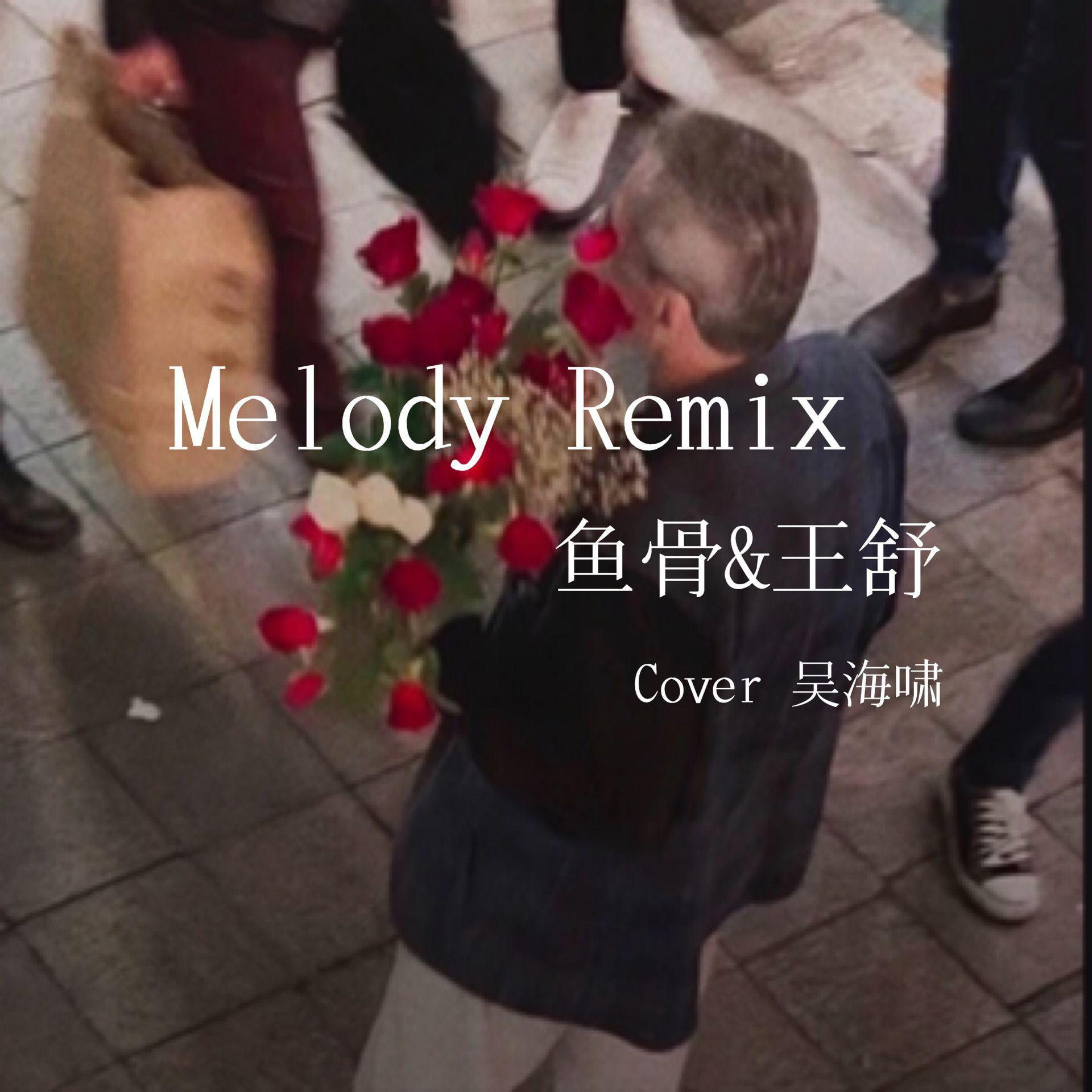 Melody Remix(翻自 吴海啸)