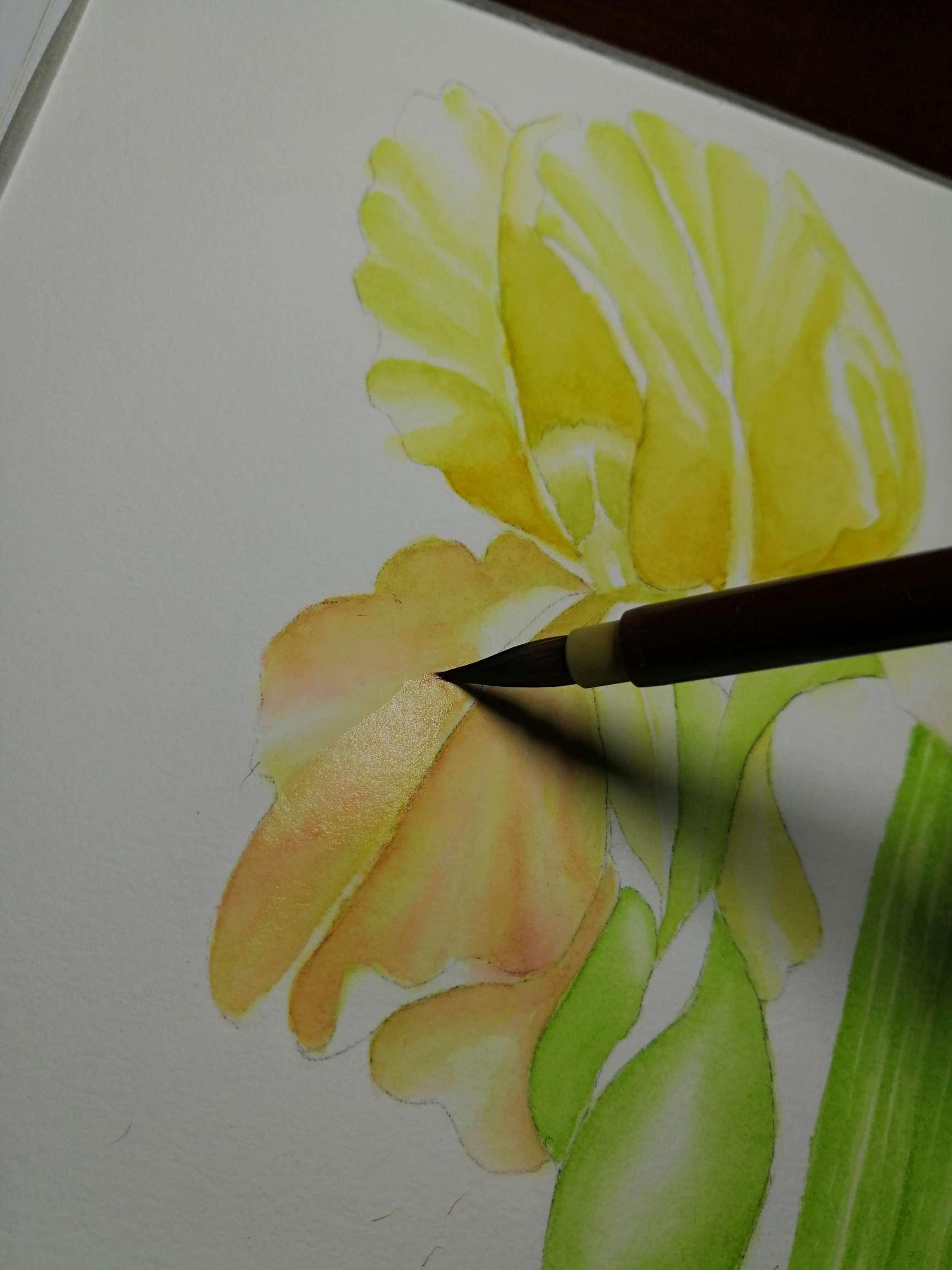 【手绘】正在画花,魔装学园高清无修在线