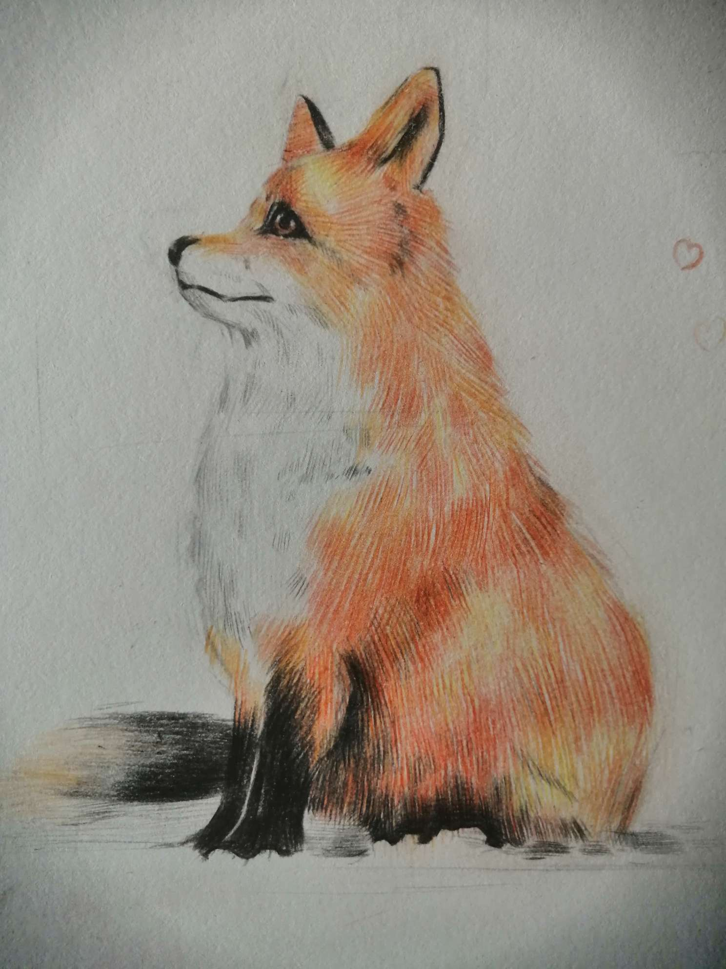 【手绘】雪中狐狸,全职猎人漫画300-小柚妹站