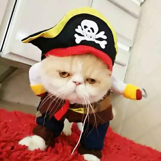 【求助】求大佬画一下这个猫猫