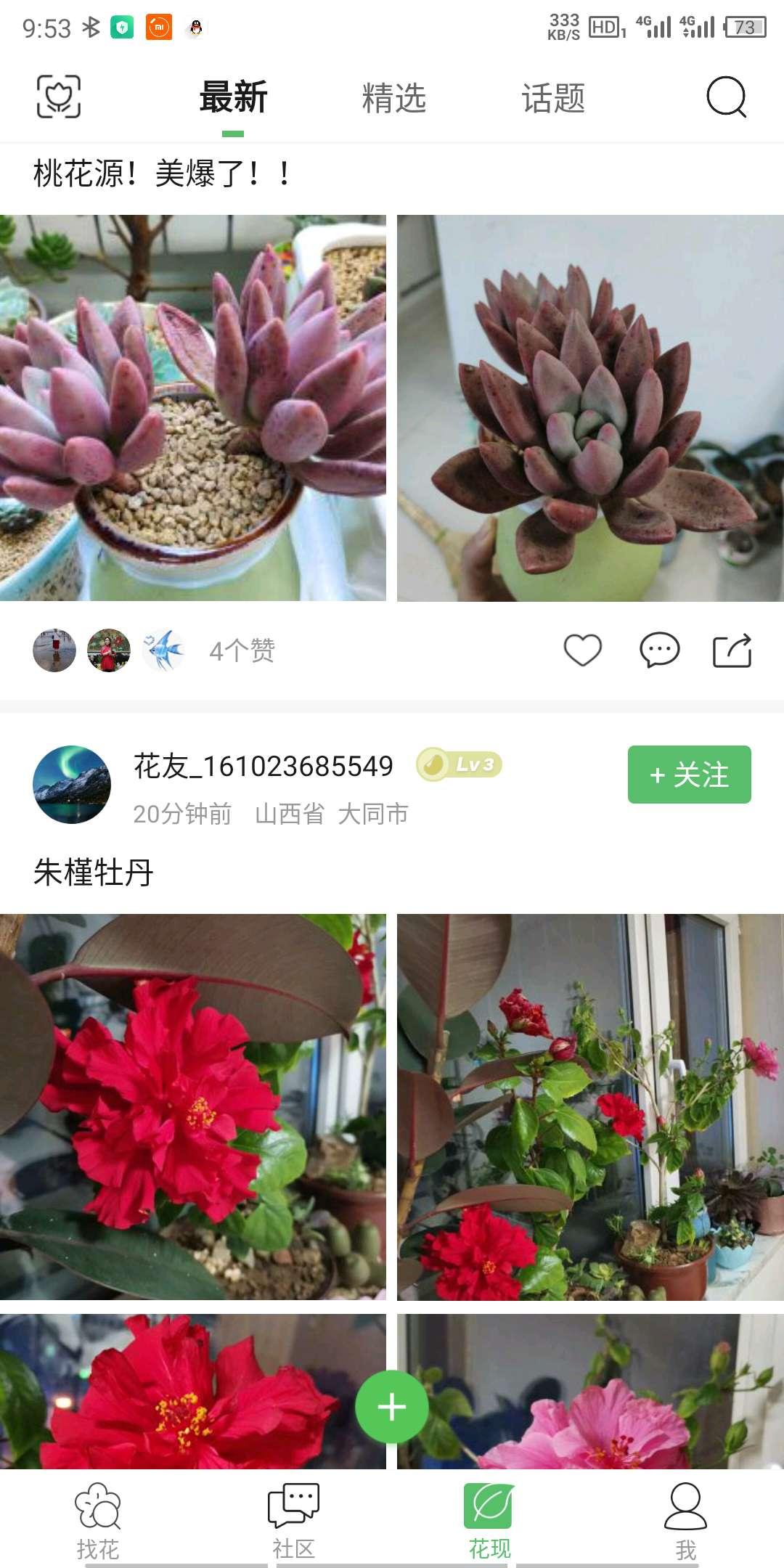 百花卉 v3.4.8