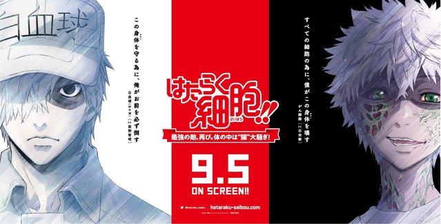 【资讯】特别上映版「工作细胞」公开新宣传图 9月5日上映