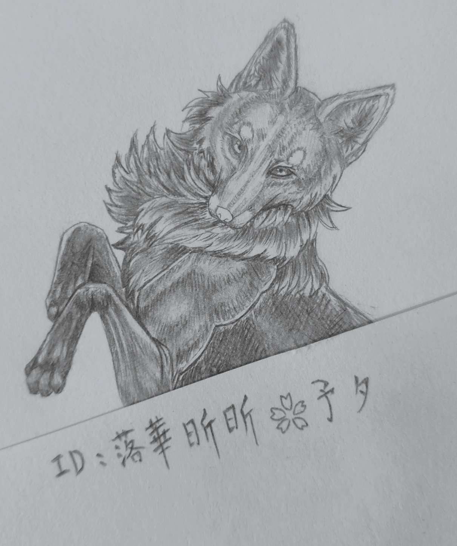 【手绘】三尾狐—