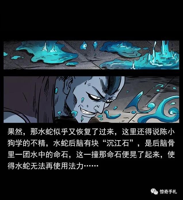【漫画更新】幽冥诡匠 第289话 《水蛟一族》