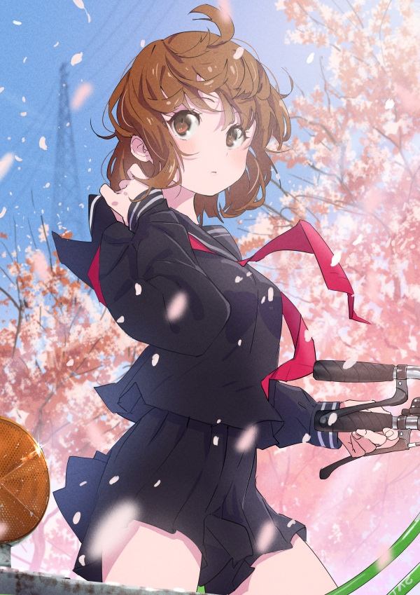【美图】樱花🌸特辑(8)